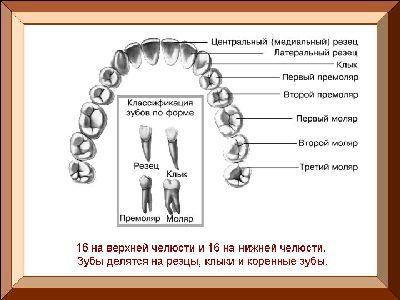 Safe teeth whitening